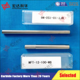 Carbide Rods with Internal Threading M10