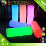 Hight Quality LED Ornament Light/LED Decorative Light