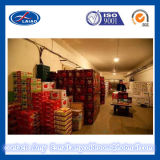 Insulation Material for Cold Storage, Modular Cold Room,