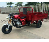 Cargo Tricycle with Large Container Box