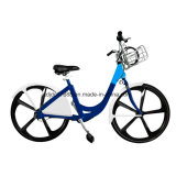 Tdjdc Share System/Public Bike/Cheap Aluminium Alloy Fork Bicycle