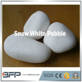 Snow White Pebble/River Stone in Project Garden Landscpae Decoration