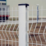 China Premium Powder Coated Garden Iron Welded Wire Fence (PCWF)