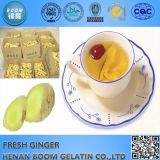 2016 New Crop China Fresh Ginger Hot Sale