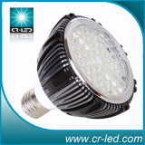 LED PAR Light PAR30-12W