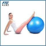 Professional Grade Anti Burst 65cm Yoga Ball