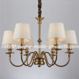 Decorative Iron Pendant Lamp Chandelier Lighting (SL2090-6)