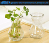 Indoor Decoration Flower Water Plant Hanging Vase Container