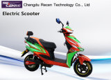 500W Mini Electric Motorcycle E-Scooter Two Wheel Electric Motorcycle/Electric Scooter
