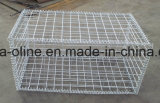 Galvanized Gabion Wire Mesh Basket/Box