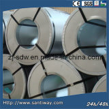 Popular Thick Metal Coil Manufacturer From China