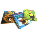 Full Color Hardcover Childrens Book Printing