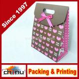 Gift Paper Bag (3217)