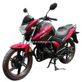 Street Bike (SP200- VII) Newest Model 2013