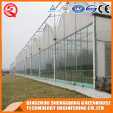 Agriculture Single Layer Polyethylene Film Greenhouse