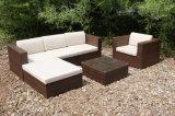 Hotel Wicker Rattan Garden Patio Outdoor Furniture Sofa Cover (FS-2260-2264)