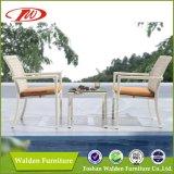 Foshan Rattan Chair, Leisure Chair (DH-9643)
