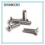 SS304 316 High Quality Security Torx Countersunk Head Screw