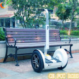 Electric Vehicle of Golf Cart with 2 Seater Self Balance