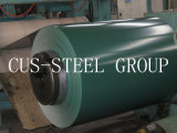 Prepainted Cold Rolled Galvanized Steel Sheet in Coil/Color Steel Coil