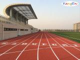 EPDM Granule for Rubber Running Track