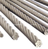 Steel Wire Rope, Galvanized Steel Wire Rope