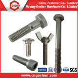 Stainless Steel Auto Fastener Bolts