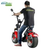 Top Quality off Road Brushless EEC Electric Scooter Ecorider Scooter