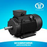 AC Permanent Magnet Synchronous Motor 30kw 1500rpm