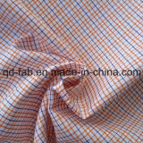 Yarn Dyed Shirting Fabric (QF13-0211)