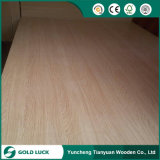 Poplar Core Natural Wood Log Veneer Faced Surface Commercial Plywood