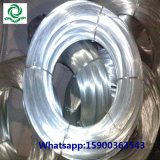 Annealed Electro Galvanized Binding Iron Wire