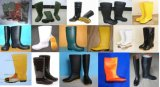 Various Men PVC Rain Boots, Work Rain Boot, Safety PVC Rain Boot
