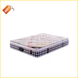 Hot Best Design Bonnell Spring for Mattress Price