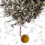 Bai Mu Dan White Peony White Tea Premium Quality