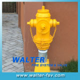 Thread Pipe Fire Hydrant for South American