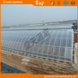 Extensive Use Solar Green House for Vegetable Planting