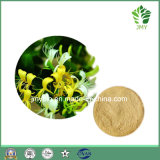Factory Price Honey Suchle Flowers Extract Extracts/Honey Suckle Extract