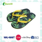 PE Sole and PVC Straps, Colorful Design, Slippers