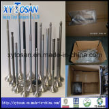 Marine Engine Valve & Valve Seat for All Models (MAN)