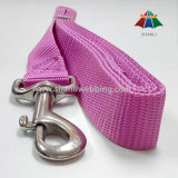 Solid Color Purple Nylon Dog Leash