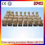 Teeth Model Crow Carving Procedure Model