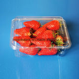 Best Quality Disposable Blister Plastic Fruit Packaging Container 500 Gram