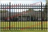 Customized Galvanized Garden Security Wrought Iron Fence /Welded Black Powder Coated Garden Steel Fencing