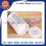 Car Wet Wipe, Cleaning Car Wipe Tissues, Custom Car Cleaner