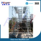 Construction Scaffold 48.3mm Ringlock Scaffolding System (FF-B)