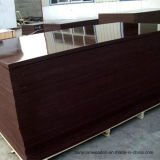 Shuttering Film Faced Plywood / Building Material