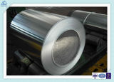 1050 5052 6061 Mill Finished Hot/Cold Rolling Aluminum/Aluminium Alloy Coil