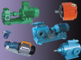 Cast Iron/ Stainless Steel Gear Pump/Thermal Oil Pump (LQRY)