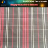 Polyester Taffeta, Polyester Yarn Dyed Fabric with Oil Calender for Jacket